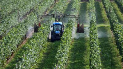 agricoltura pesticidi fito farmaci